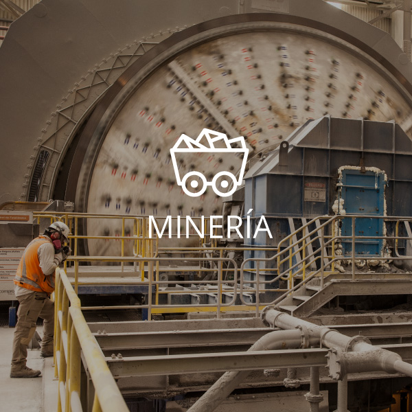 Schwager Minería