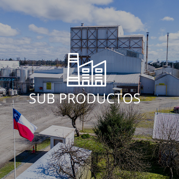 Schwager Subproductos